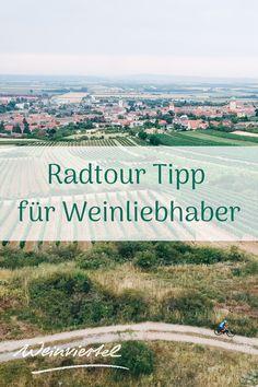 Durch das hügelige Retzer Land führt die bezaubernde Weinviertel DAC Radroute. Ausgangspunkt des etwas über 55 Kilometer langen Radkurses ist die Weinstadt Retz. Entlang der Route lernen Sie die Veltliner-Hochburg Röschitz sowie die für seine Kellergassen bekannten Orte Zellerndorf und Pillersdorf kennen. Wieder zurück in Retz empfiehlt es sich, nach all der Anstrengung, ein Gläschen des für die Region so typischen Weinviertler DAC zu verköstigen.  © Weinviertel Tourisms / Gollner Mountains, Nature, Travel, Ski, Graz, Road Trip Destinations, Explore, Travel Inspiration, Naturaleza