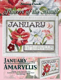 Flowers of the Month - January Amaryllis – Stoney Creek Online Store