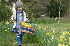 Foxs Lane: Signs of springtime.