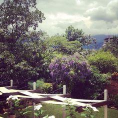 My view. Bucaramanga
