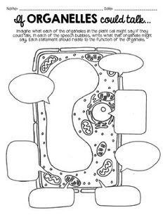 """CELLS """"Super Cell"""" Project & MORE - Structures/Functions o"""