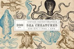 Antique Sea Creatures & Monsters by Eclectic Anthology on Octopus, Nautical Logo, Deep Sea Creatures, Business Illustration, Flat Illustration, Monster Design, Sea Art, Vintage Theme, Sea Monsters