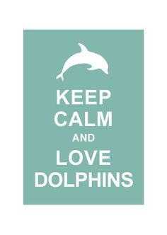177 Best Dolphins & Porpoises images in 2016 | Dolphins, Sea