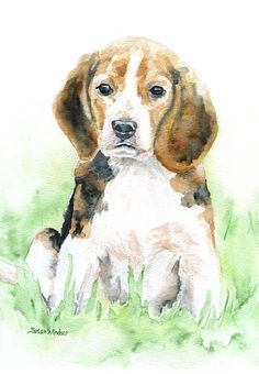 Beagle watercolor giclée reproduction. Portrait/vertical orientation. Printed on fine art paper using archival pigment inks. This quality printing allows over 100 years of vivid color in a typical hom