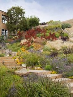 Garden Ideas Brisbane a slope in your yard can become your private paradise. | garden
