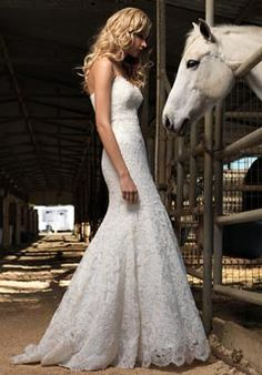 All the more reason to have a horse at your wedding!