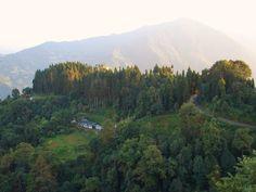 #magiaswiat #podróż #zwiedzanie #sikkim #blog #azja #zabytki #swiatynia #indie #miasto #aszram #ganges #budda #lingdum #gantok #rumtek #klasztor #temple #stupa #gompaEnohey #chorten #instytutnamgya #gompadodrul #klasztor #dharmaczakracenter Budda, Mount Rainier, Indie, Mountains, Nature, Blog, Travel, Hu Ge, Beauty