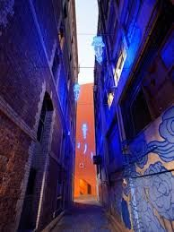 Image result for sydney song bird  pavement