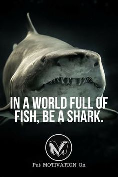 Be a shark.Follow all our motivational and inspirational quotes. Follow the link to Get our Motivational and Inspirational Apparel and Home Décor. #quote #quotes #qotd #quoteoftheday #motivation #inspiredaily #inspiration #entrepreneurship #goals #dreams #hustle #grind #successquotes #businessquotes #lifestyle #success #fitness #businessman #businessWoman #Inspirational