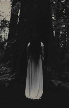 Entranced and curious, the dark forest is calling to her, and she has no choice… Dark Fantasy, Arte Obscura, Darkness Falls, Dark Gothic, Dark Photography, Dark Forest, Dark Beauty, Macabre, Vampires