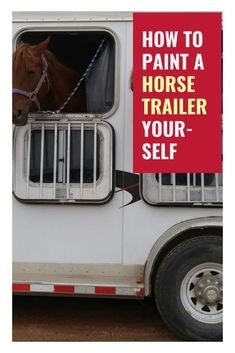 In this article, we provide tips to help you paint your horse trailer. Read on to learn more on how to paint a horse trailer yourself. Horse Tack Rooms, Horse Barns, Horse Stalls, Buy A Horse, Horse Love, Horse Trailer Organization, Horse Training, Training Tips, Dressage Horses