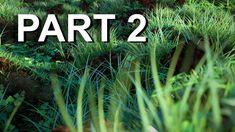 How to Make Procedural Nature in Blender Part 1 – Iridesium – Famous Last Words Blender Tutorial, 3d Tutorial, Cg Art, Blender 3d, Famous Last Words, Animated Cartoons, Architecture Photo, Game Design, Design Ideas