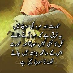1605 Best Urdu Quotes Images In 2019 Allah Allah Islam