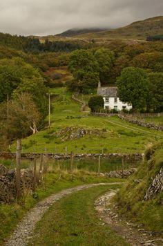 wanderthewood:  Path to Ty'n y Ddol, Gwynedd, Wales by Brian Burnett
