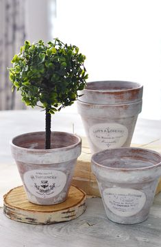 French Country Decorating 94531 Learn how to make these amazing DIY Aged French Terracotta Pots for your home in a few easy steps -using the dry brushing technique and decorating them with French Ephemera Labels French Country Rug, French Decor, French Country Decorating, French Crafts, French Cottage Decor, French Style, Vasos Vintage, Foto Transfer, Painted Pots
