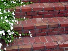 entry steps using leftover brick from garage Patio Steps, Brick Steps, Brick Walkway, Outdoor Steps, Garden Steps, Concrete Patios, Brick Patios, Patio Images, Front Stairs