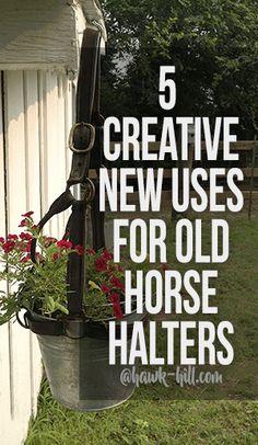 Horse Halters, Horse Bridle, Horse Saddles, Breyer Horses, Horse Head Wreath, Leather Halter, Equestrian Decor, Equestrian Stables, Western Decor