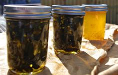 Candied Jalapenos (Cowboy Candy) | Dixie Chik Cooks