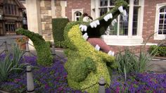 Tick Tock Crock Topiary at the Epcot International Flower & Garden Festival