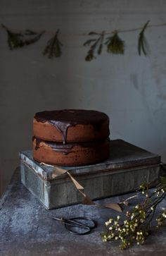 Chocolate and Poppy Seeds Cake / Photography and Styling by Sanda Vuckovic | Little Upside Down Cake