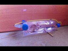 the 13 best pop bottle mouse traps images on pinterest pet plastic
