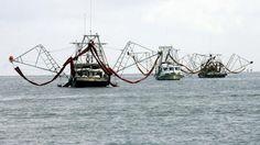 Fishing boats haul oil containment booms near the coast of Grand Isle,Louisiana