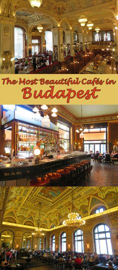 We spent 2 months in Budapest and went to some of the world's most beautiful cafés. So which were we most impressed with? That's in this post.  #Budapest #cafes