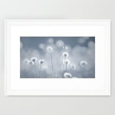 BLUE JOLLY Framed Art Print #photography #grass #nature #blue #grey #fading #light #silver #apartment #decoration #wall #framedprint #print #poster #bluegrey #white #elegant #soft