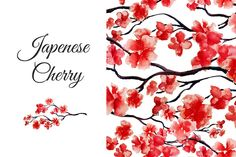 Japenese cherry collection