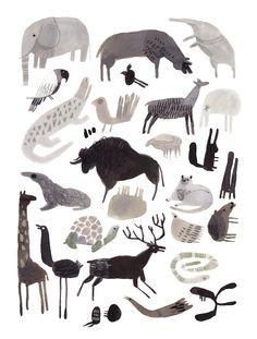 animaux illustrations