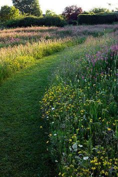 25 Beautiful Wildflower Field Ideas Our Garden Meadow Garden You are in the right place about Garden Types landscapes Here Meadow Garden, Garden Cottage, Dream Garden, Prairie Garden, Big Garden, Unique Garden, Natural Garden, Wild Flower Meadow, Wild Flowers