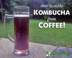 Try this unusual coffee kombucha, made using a kobucha scoby and brewed coffee for an interesting and probiotic-rich cold beverage.