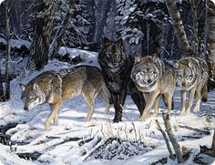 Wolves in Snow Cutting Board | American Expedition