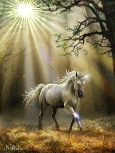 Glimpse of Unicorn Gothic Fantasy Wicca Mythical By A Stokes Fridge Magnet NEW Unicorn And Fairies, Unicorn Fantasy, Unicorn Horse, Unicorn Art, Magical Unicorn, Beautiful Unicorn, Beautiful Fairies, Beautiful Horses, Magical Creatures