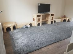 Fab indoor set up using manor pet housing items