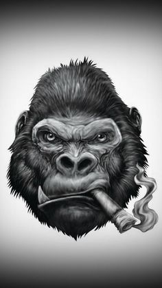 Search free monkey Ringtones and Wallpapers on Zedge and personalize your phone to suit you. Start your search now and free your phone Gorilla Wallpaper, Monkey Wallpaper, Tattoo Drawings, Art Drawings, Image Moto, Gorilla Tattoo, Cigar Art, Monkey Art, Dope Art