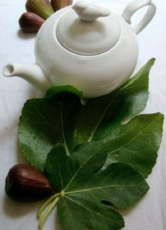 My mother-in-law introduced me to fig leaf tea while visiting her in Ecuador. It is simple to make and quite tasty. I had no idea of the medicinal benefits. Fig Leaf Tea, Health Benefits Of Figs, Fig Newtons, Fig Recipes, Drink Recipes, Cooking Recipes, Fresh Figs, Fig Leaves, Fig Tree