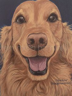Dog Portrait 8x10 Pet Portrait Custom Pet Portrait by MeliaArts, $85.00 Spreading some esty love!
