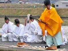 #Japanese yellow, 伊勢神宮の神田で種まき-まずは田を耕す鍬を作る祭典から /三重