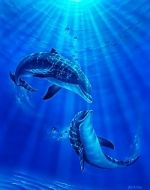 dolphins are so pretty Dolphin Painting, Dolphin Art, Underwater Painting, Dolphin Images, Dolphin Photos, Underwater Creatures, Ocean Creatures, Orcas, Lucky Wallpaper