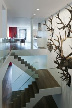 Home design interior room design interior design Interior Stairs, Interior Exterior, Interior Architecture, Stairs Architecture, Commercial Interior Design, Modern Interior Design, Home Design, Contemporary Design, Glass Balustrade