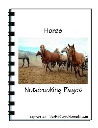 horse notebooking pages