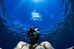 Bay News, Byron Bay, Training Courses, Underwater, Fields, Coastal, Water Bottle, Australia, South Wales