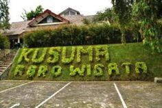 kusuma agrowisata batu malang tempat wisata memetik buah sendiri langsung dari pohonnya