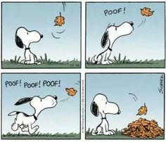 Snoopy... the leaf whisperer!