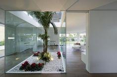 Patio interior con palmeras sobre jardín seco.
