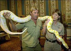python - Buscar con Google