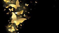 Resultado de imagem para butterfly wallpaper