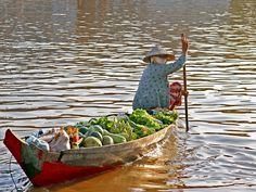vietnam mekongdelta