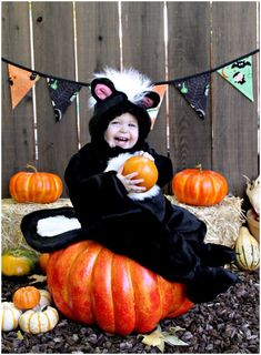 Toddler Skunk Costume Happy Halloween 2013 | Missy B Photography | Walnut Creek, CA Newborn Photographer